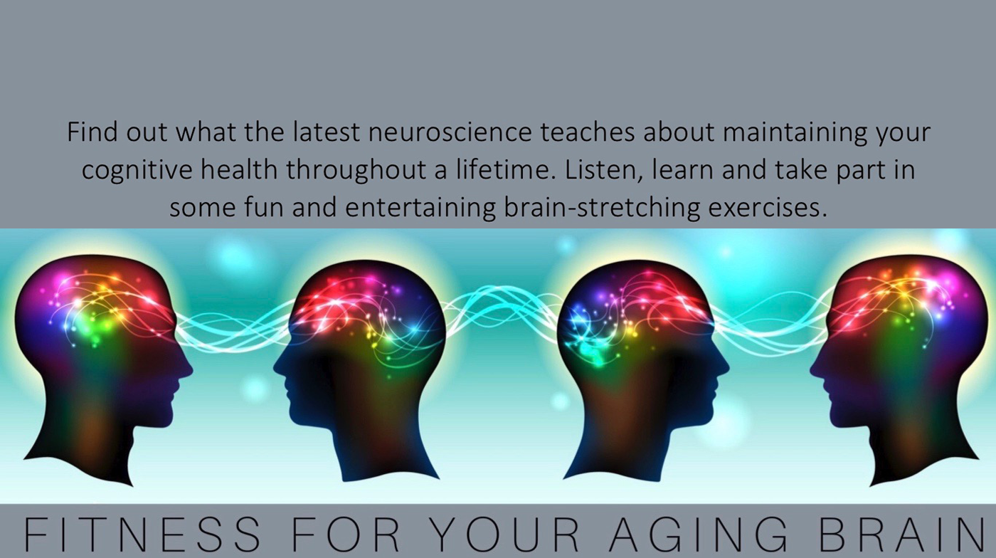 fitness aging brain